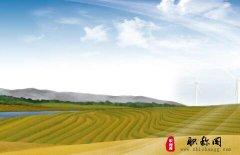农机补贴与农机推广可持续发展措施
