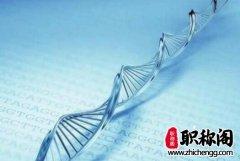 PBL教学法在泌尿外科学的应用